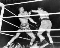 Dick Turpin boxer