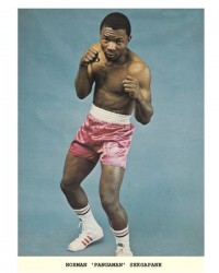 Norman Sekgapane boxer