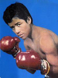 Vicente Blanco boxer