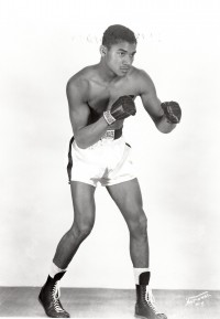 Willie Troy boxer