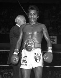 Lupe Pintor boxer