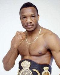 Lolenga Mock boxer