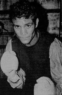 Pepe El Toro boxer