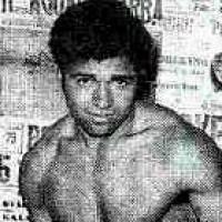 Sugar Silex boxer