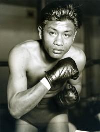 Little Dado boxer