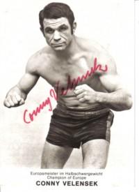Conny Velensek boxer