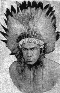 Wilson Dunn boxer