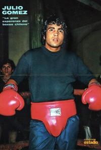 Julio Gomez boxer