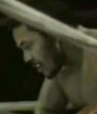 Hector Mercedes boxer