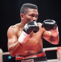 Yogli Herrera boxer