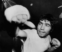 Rocky Gattellari boxer