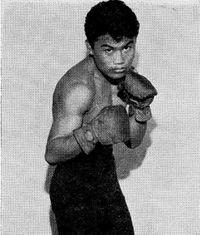 Baby Lorona boxer
