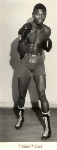Sugar Cliff boxer