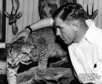 Wildcat O'Connor boxer
