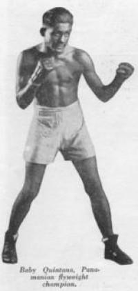 Indian Quintana boxer