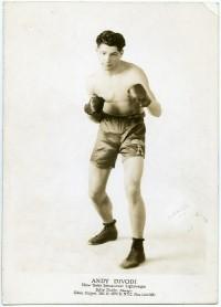 Andy DiVodi boxer