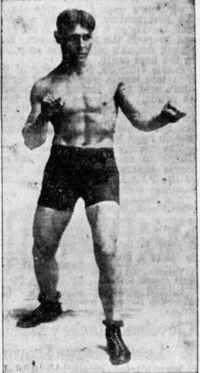 Plowboy Harris boxer