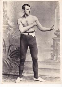 Dido Plumb boxer