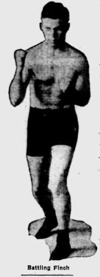 Battling Finch boxer