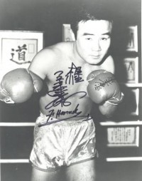 Fighting Harada boxer