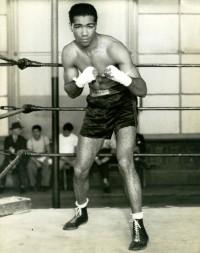 Cocoa Kid boxer