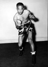 Buddy J boxer